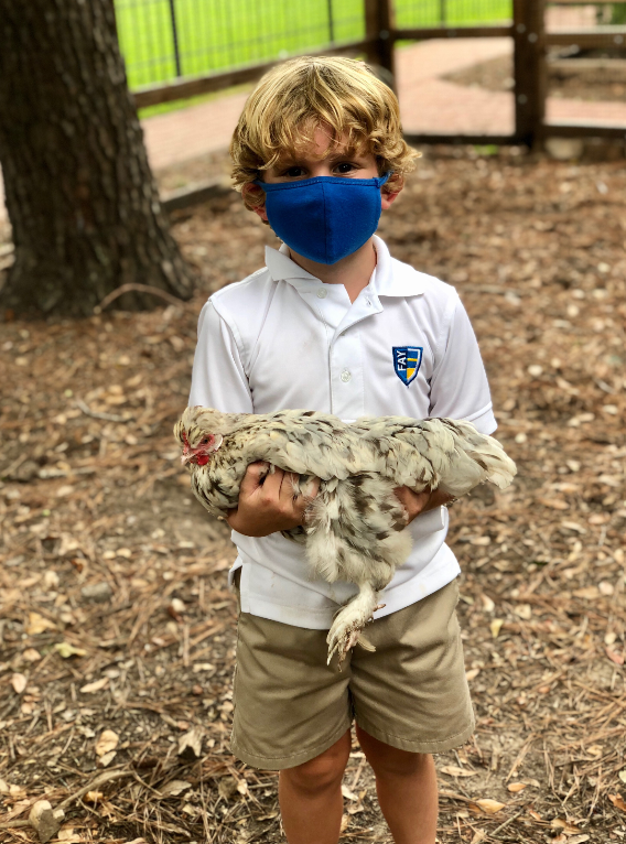 Fay Students Taking Care of the Fay Hens!